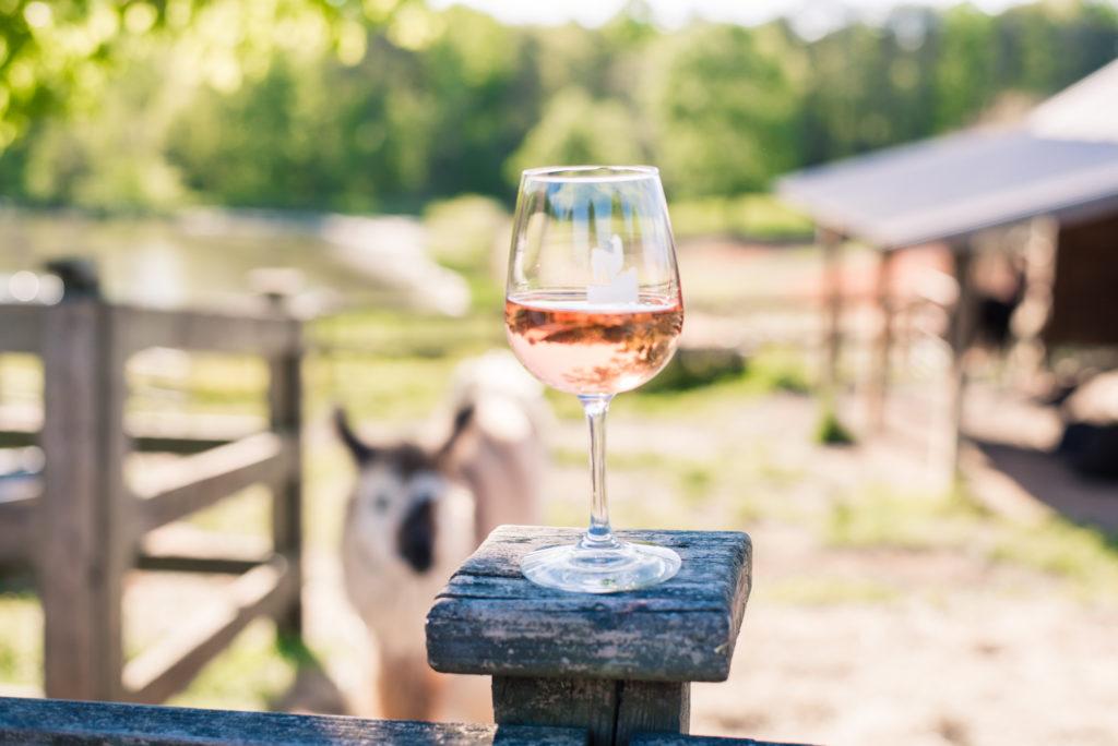 North Carolina wineries: Divine Llama Vineyard